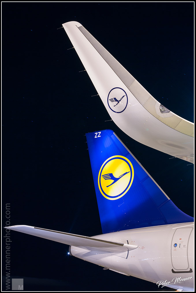Sharklet and Tail